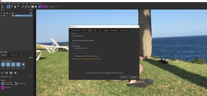 Screenshot GPU preferences BCC Remover
