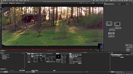 Screen Shot 2021-08-31 at 4.05.47 PM