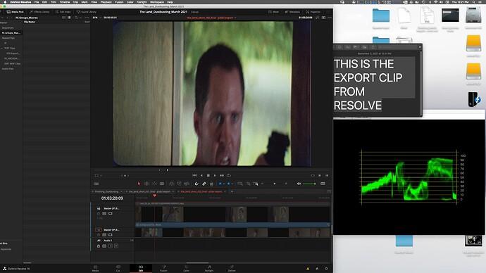 Screen Shot_Resolve Timeline
