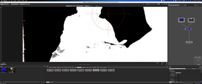 Screen Shot 2021-02-11 at 3.52.33 PM